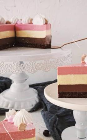 sweetologistco Neopolitan Cake